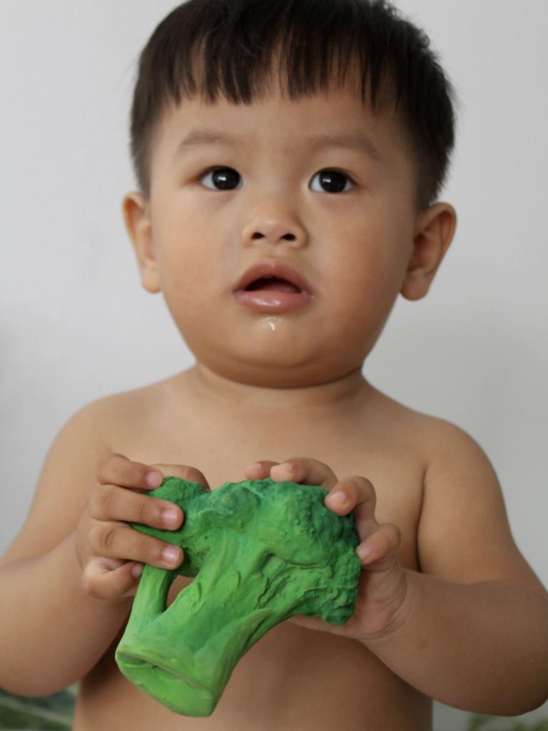 Brucy the Broccoli Veggie Teether