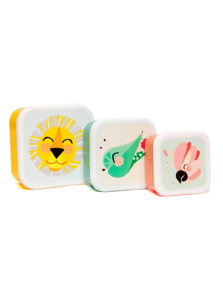 Shiny Lion Lunchbox Set