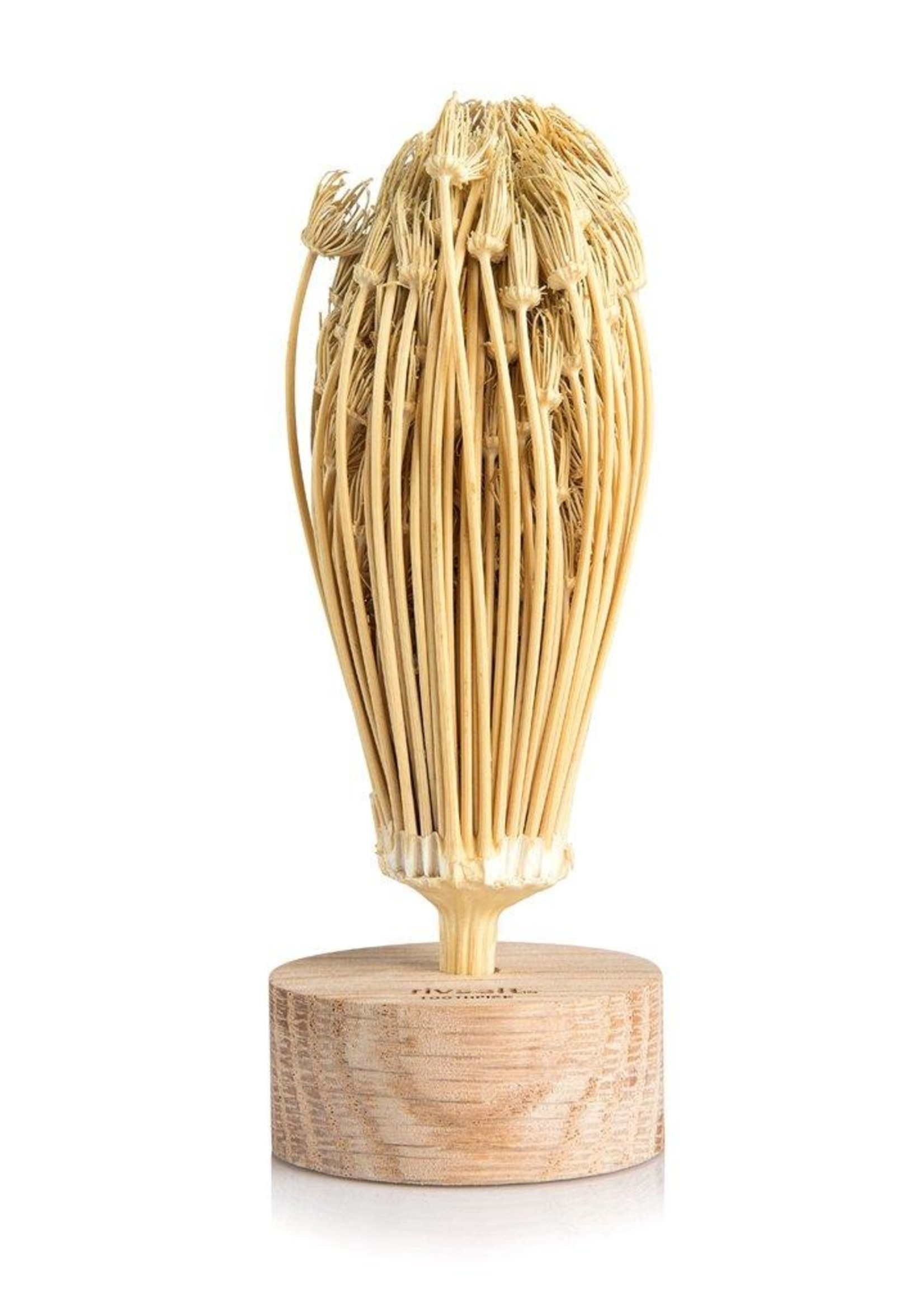 RIVSALT Natural Flower Toothpicks