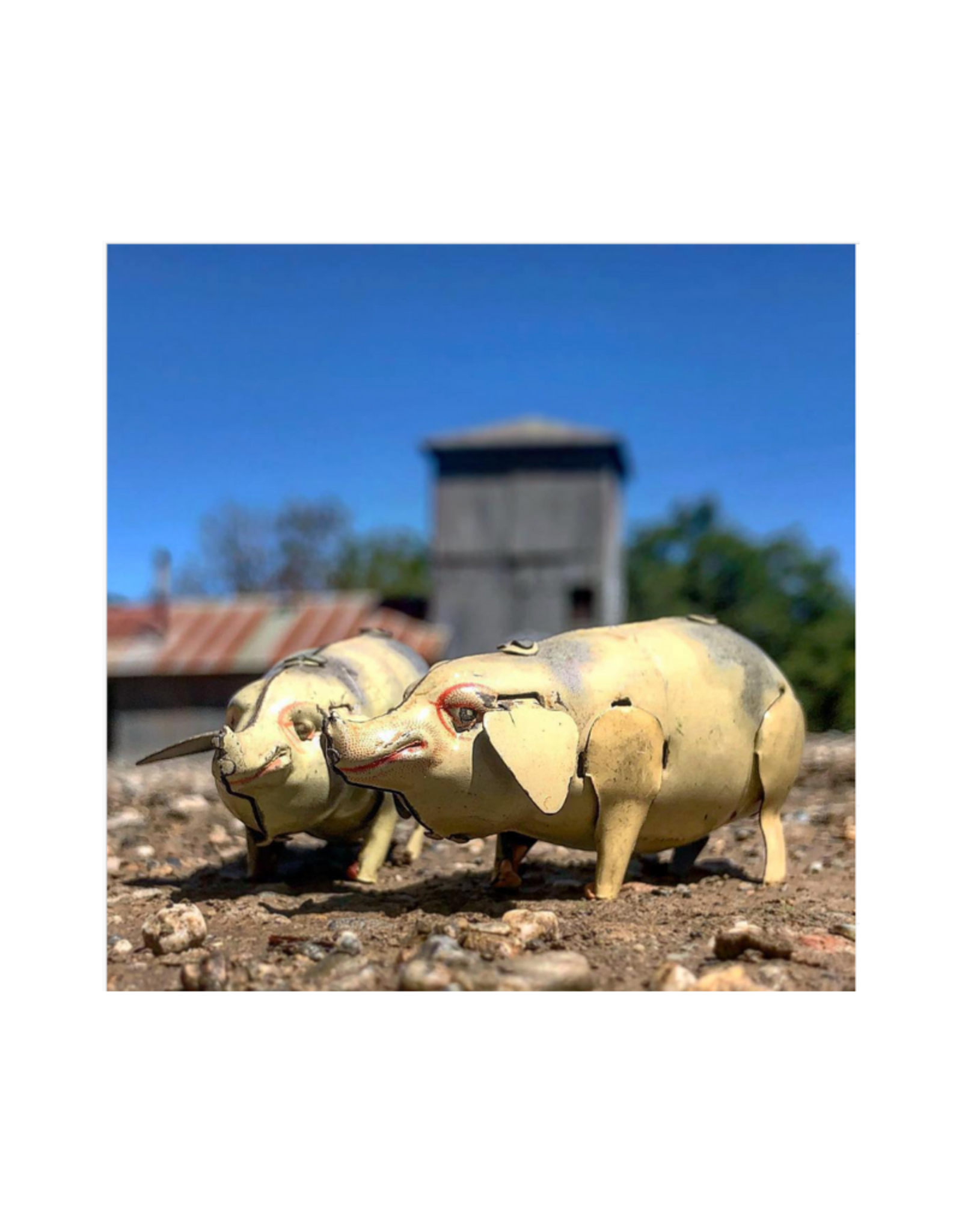 Jerry Business Vintage Toy Photo on Metal - Pigs