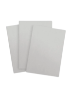 Baron Fig Baron Fig - Vanguard Softcover Blank Notebooks - Light Gray