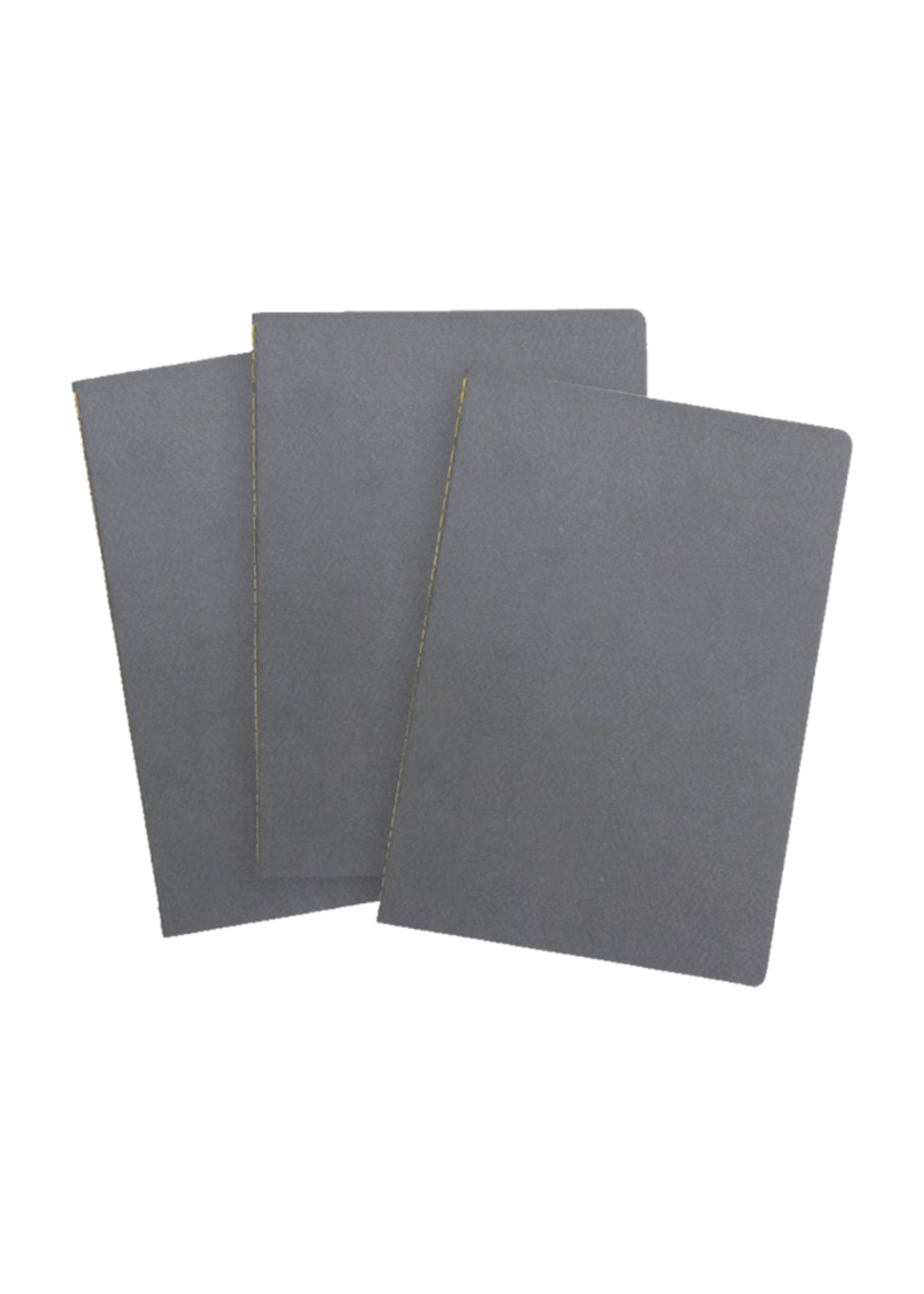 Baron Fig Vanguard Softcover Ruled Notebooks - Charcoal