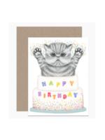 Dear Hancock Birthday Dear Hancock Jumping Kitten