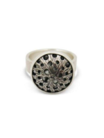 Hilary Finck Jewelry Hilary Finck Asteroid Spin Ring