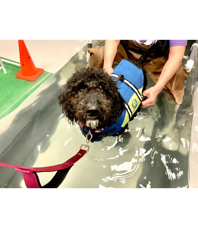 Rehab/Hydrotherapy Per Visit