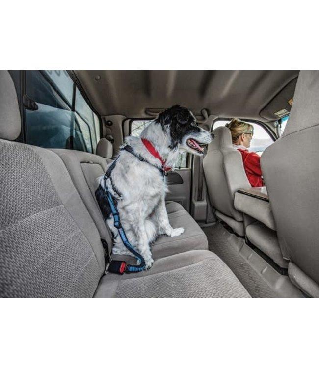 Kurgo Kurgo Direct To Seatbelt Bungee Tether
