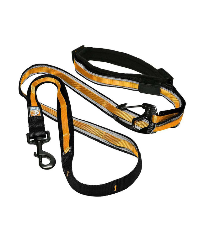 Kurgo Kurgo Quantum 6-In-1 Dog Leash