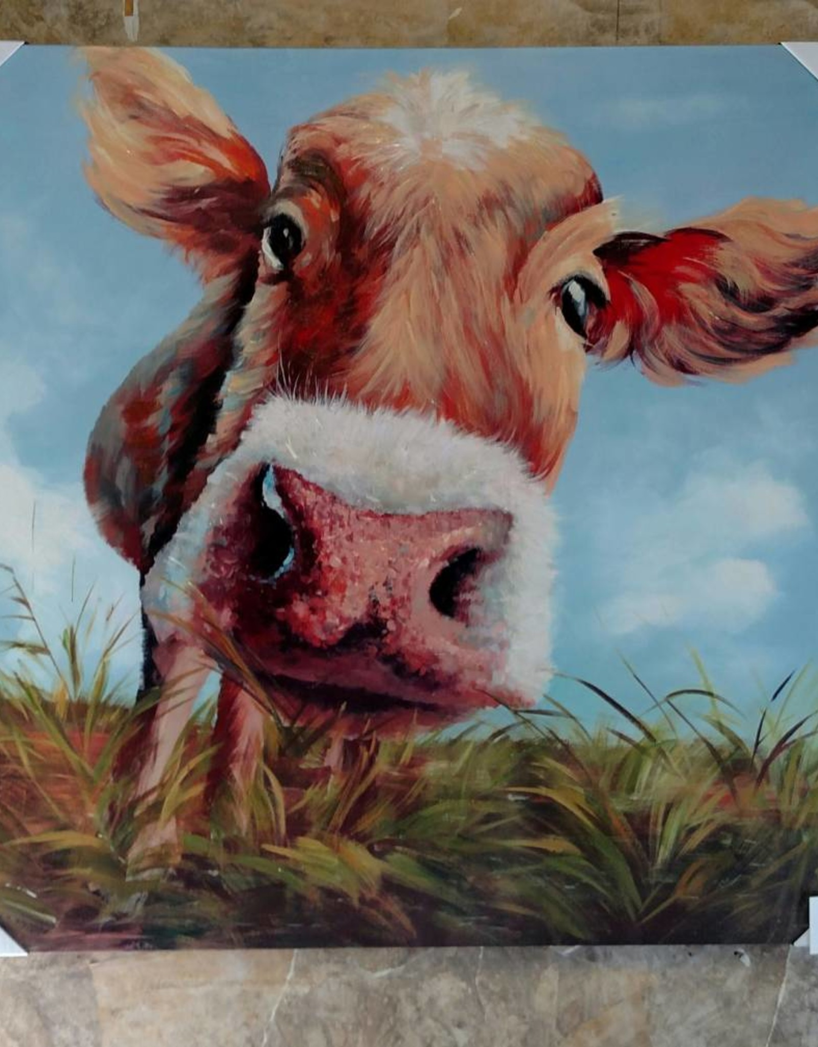 Crestview COW PICTURE