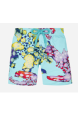 Vilebrequin Vilebrequin Swim Trunks