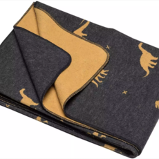David Fussenegger David Fussenegger Blanket 'Dinosaurs All Over'