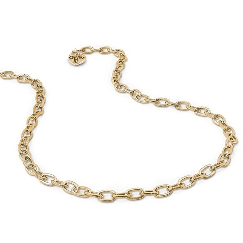Charm It: Gold Chain Necklace