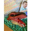 Birdie Box: Dinosaur Box 3-6 Years