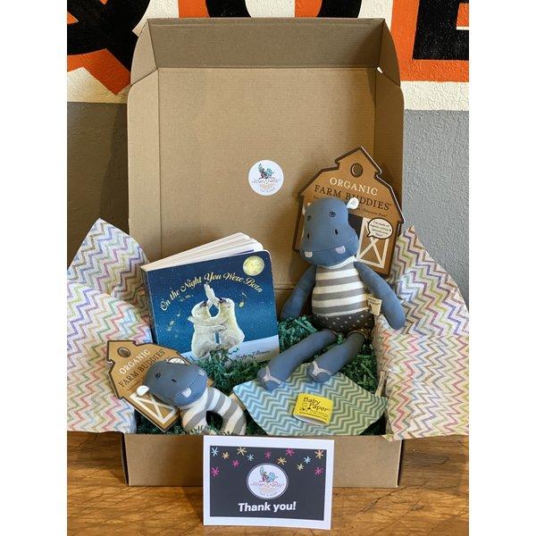 Assorted A Birdie Box: Baby Box (0-12 months) Boy