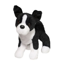Douglas Douglas: Quincy Boston Terrier