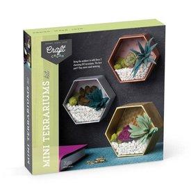 Ann Williams Ann Williams: Craft Crush Mini Terrariums
