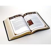 Holy Bible (Study Bible)