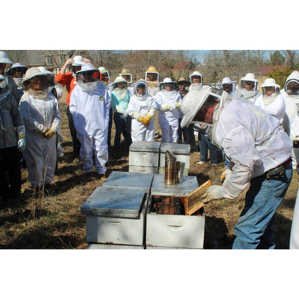 Bee Well Beekeeping Bootcamp