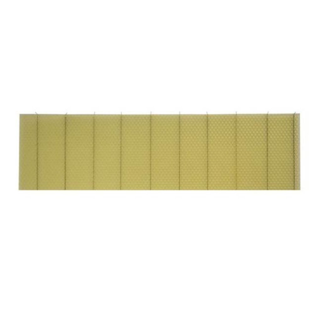 "Foundation Medium 5 5/8"" 50pk"