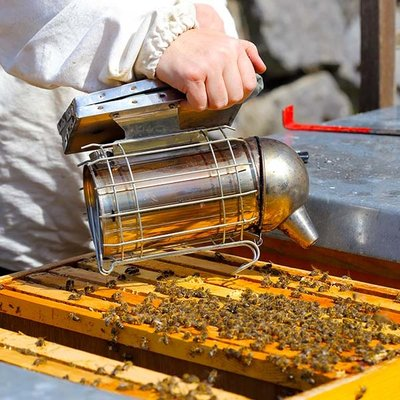Bee Well Common Sense Beekeeping Class Feb 1, 2020