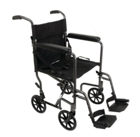 ProBasics ProBasics Steel Transport Wheelchair