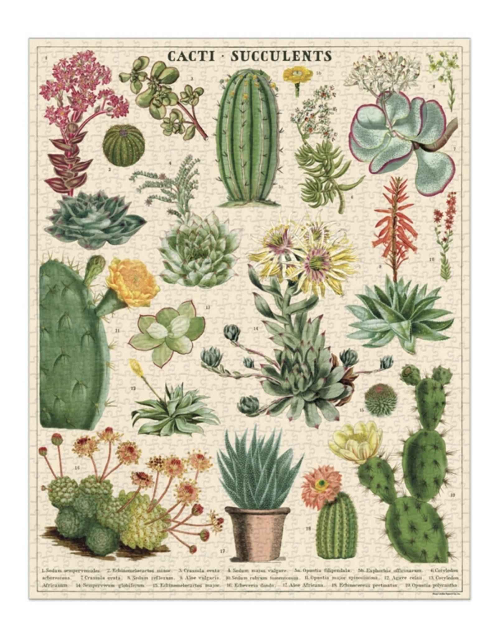 Cavallini Cacti & Succulents Puzzle