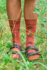Friday Sock Co Pine Cone & Pine Tree Socks