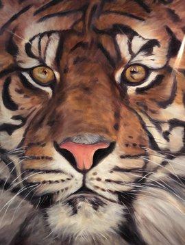 Tiger Up Close (Print)