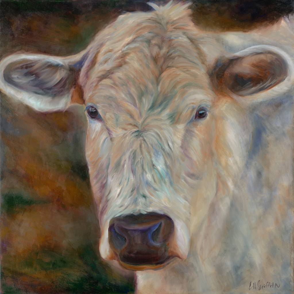 Blonde Cow (Print)