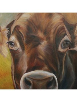 Cow Up Close (Print)