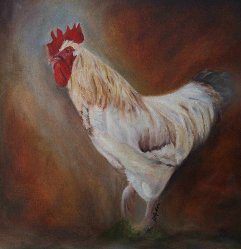 Rooster Up Close