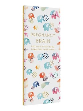 Hachette Books Pregnancy Brain  - Lists For The Forgetful Mom To Be