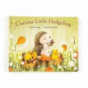 Curious Little Hedgehog Book