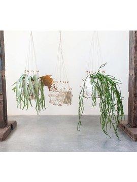Macrame Plant Hanger w/ Beads