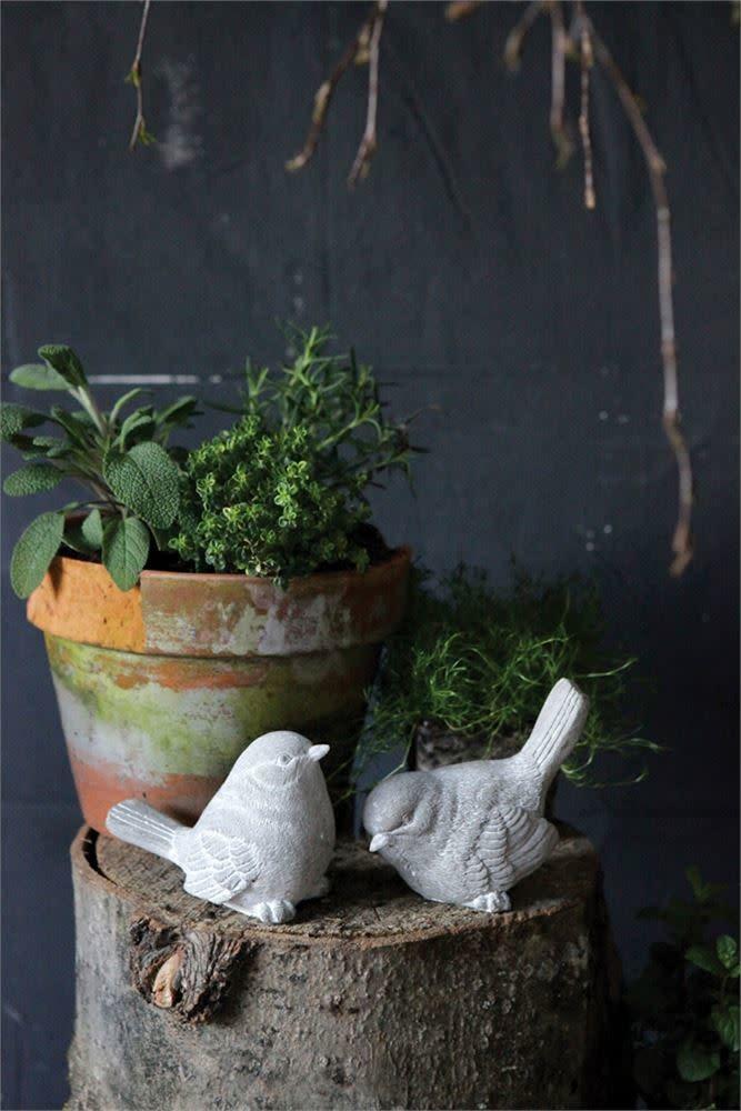 Cement Birds