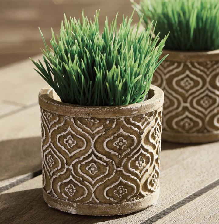 Mini Potted Grass Green