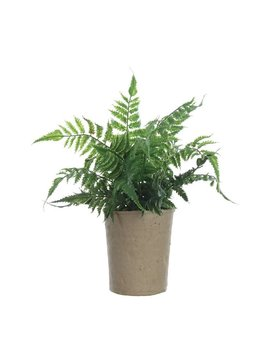 Faux Fern in Pot