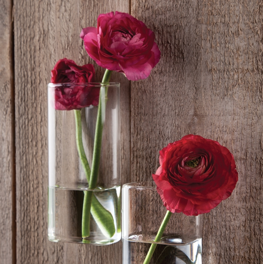 Rectangle Wall Flower Vase