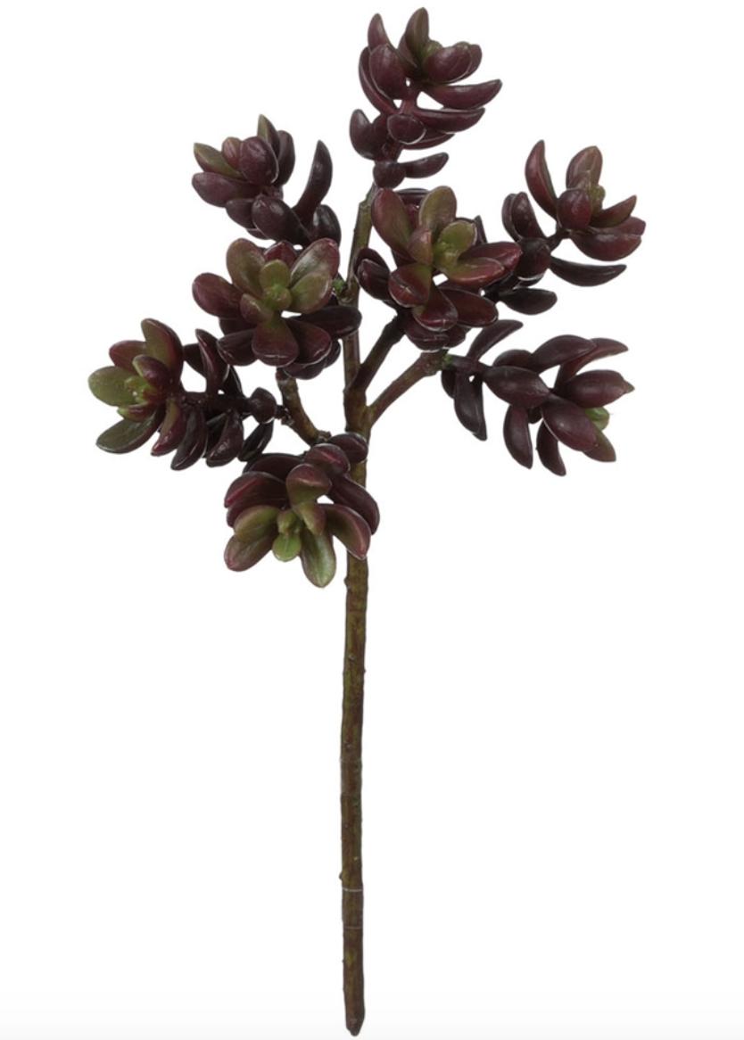 Succulent Stem 5Lx4Wx11.5