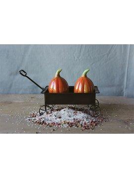 Ceramic Pumpkin Salt & Pepper Shakers in Cart
