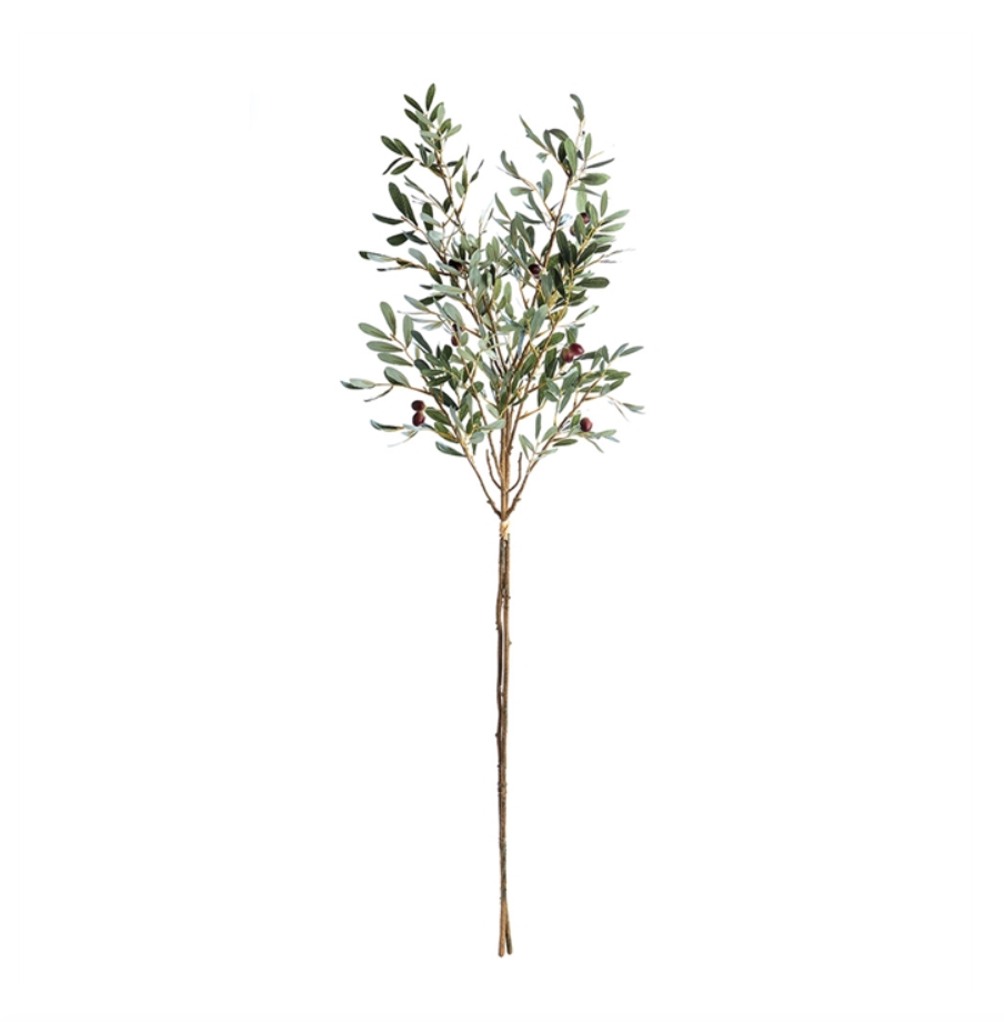 """Olive Branches 43"""""""
