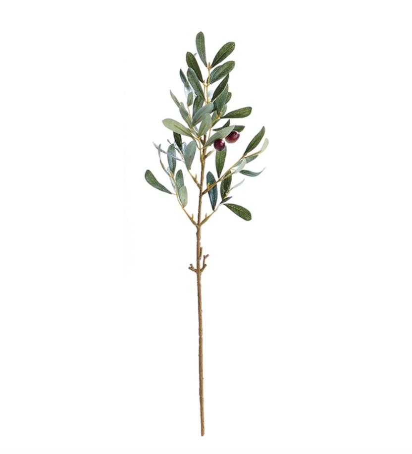 "Olive Stem 19.5"""