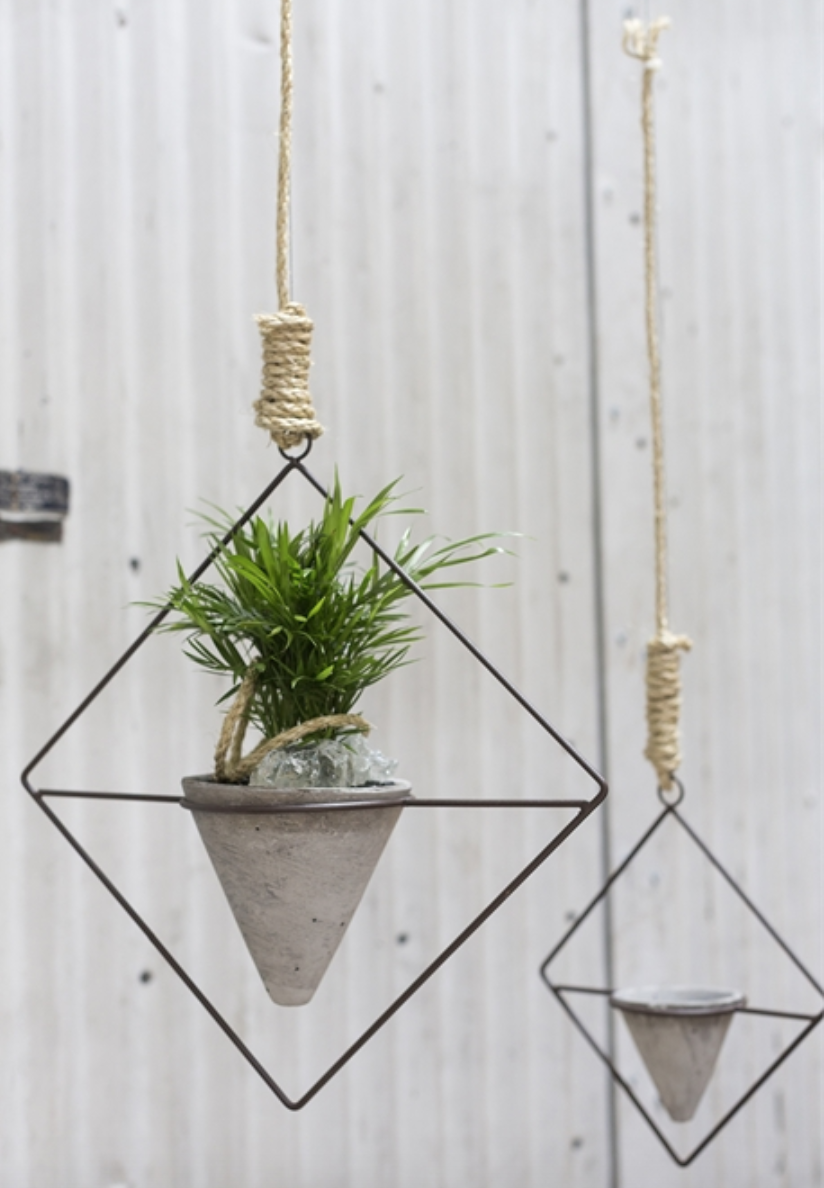 Accent Decor Citizen Plant Hanger
