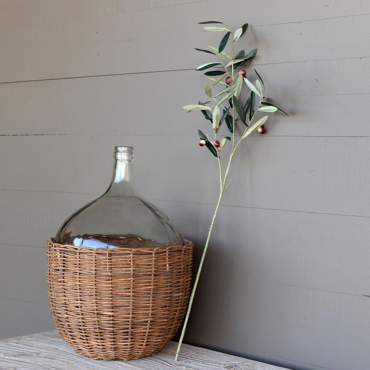 Tuscan Olive Branch Stem