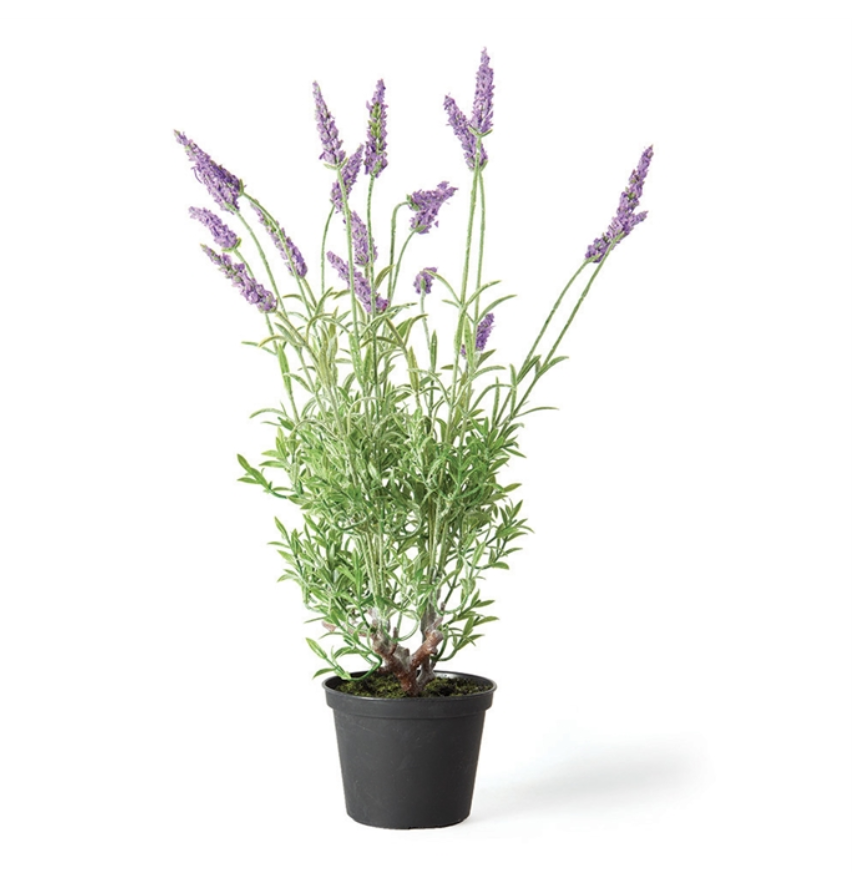 "French Lavender 18"" Drop In"