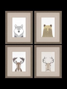 Paragon Wildlife Pack