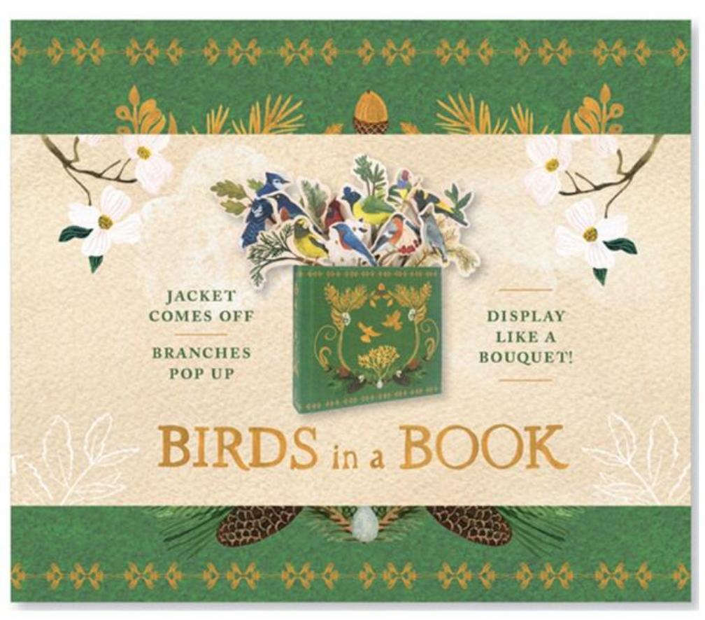 ABRAMS-STC Birds In A Book
