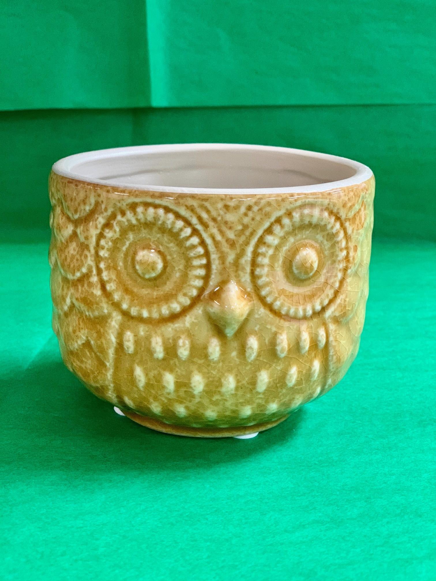 Stoneware Owl Pots