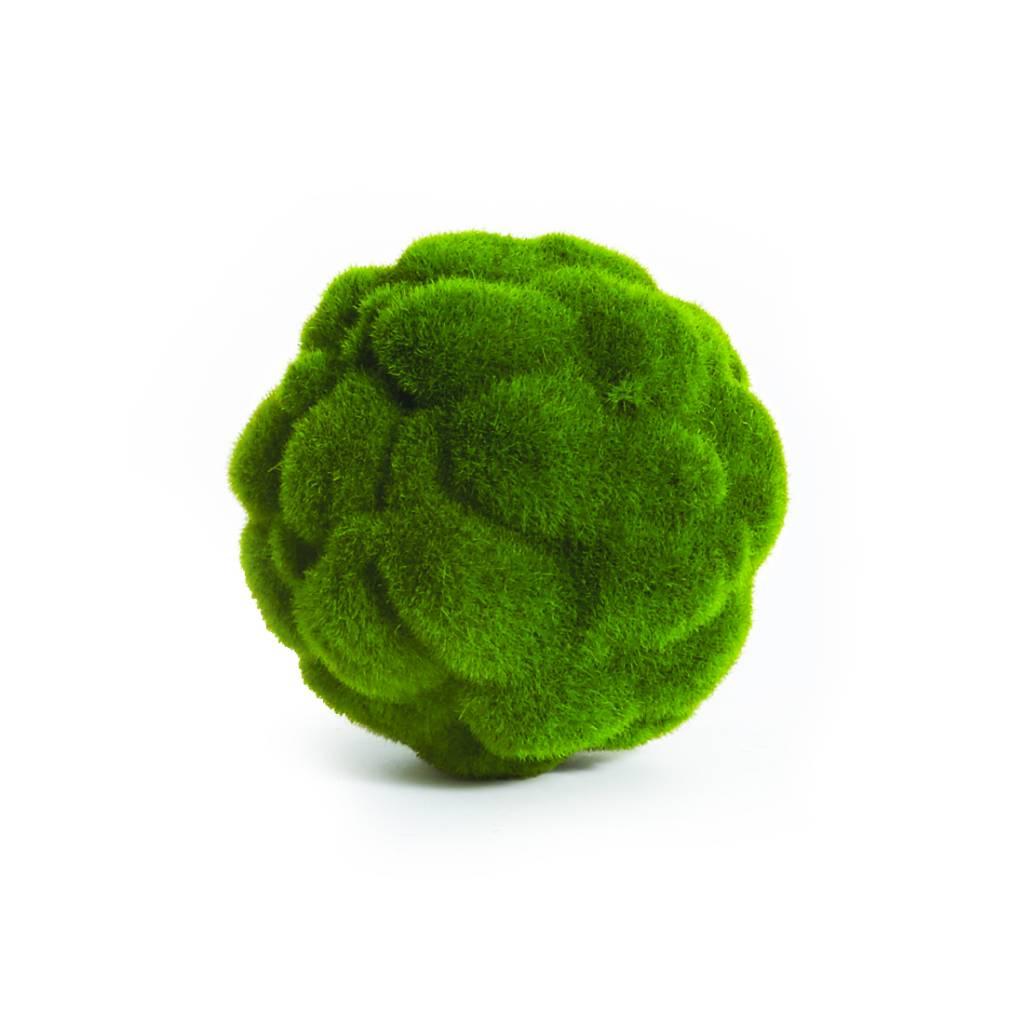 "Mood Moss Orb 5.5"""
