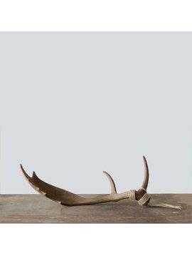 Caribou Antler Decor for Sitting or Hanging