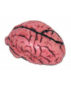 Deluxe Brain Prop